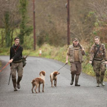 Irish Rough Shooting, the Next Generation of Young Guns