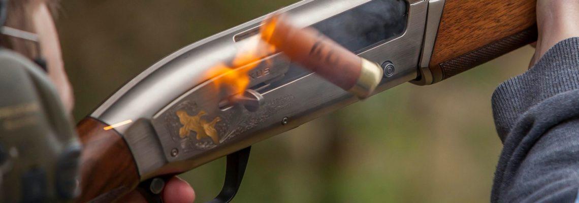 Gun and Cartridge, semi automatic